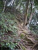 新竹關西赤柯山、赤柯山南峰、東獅頭山:IMGP6328.JPG