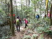 新竹尖石八五山古道、內鳥嘴山、北得拉曼步道:DSCN5029.JPG