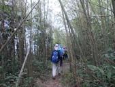 嘉義梅山雲嘉五連峰(太平山、梨子腳山、馬鞍山、二尖山、大尖山):DSCN4397.JPG
