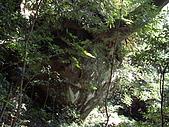 新竹尖石北得拉曼:IMGP0991.JPG
