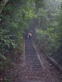 南投魚池水社大山登山步道、卜吉山:IMGP2179.JPG