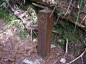 台中和平馬崙山、新山:IMGP2207.JPG