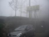 南投鹿谷樟空崙山、貓冬望山、大崙頭山、銀杏森林(羊彎上、下大石公):IMGP8914.JPG