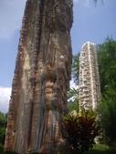 台南楠西玄空法寺、永興吊橋:IMGP6379.JPG