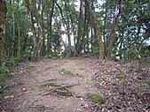 新竹關西赤柯山、赤柯山南峰、東獅頭山:IMGP6331.JPG