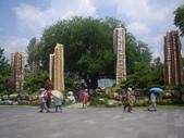 台南楠西玄空法寺、永興吊橋:IMGP6384.JPG
