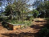桃園蘆竹羊稠坑森林步道、拔崁腳山、尖山、羊稠坑山、土地公頭山:IMGP5970.JPG