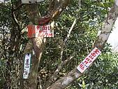 桃園大溪金面山:IMGP0757.JPG