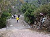台中東勢天梯取經步道、北大茅埔山:IMGP2709.JPG