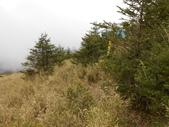 台中和平閂山鈴鳴山(DAY1-閂山):DSCN4237.JPG