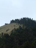 台中和平閂山鈴鳴山(DAY1-閂山):DSCN4250.JPG