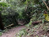 新竹芎林飛鳳山:IMGP1394.JPG