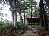 苗栗頭份老崎休憩步道、老崎坪頂山:IMGP4938.JPG