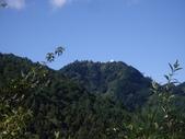 南投信義鹿林前山、鹿林山、麟趾山:IMGP3459.JPG