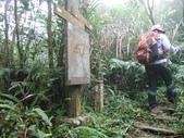 新北三峽白雞山、雞罩山前峰、雞罩山、鹿窟尖山:DSCN5212.JPG
