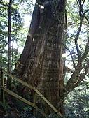 新竹尖石北得拉曼:IMGP0981.JPG