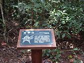 台中和平東卯山:IMGP2118.JPG