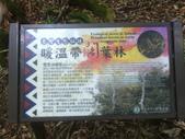 苗栗泰安雪見遊憩區、林間步道:IMG_0024.jpg