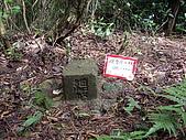 新竹關西流民窩山:IMGP3529.JPG