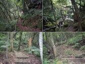 台北石門青山瀑布步道、尖山湖步道:IMGP9789-93.JPG