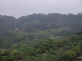新竹新埔九芎湖步道、九芎湖山:IMGP1973.JPG