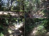 台北內湖白鷺鷥山、康樂山、柿子山:IMGP7038-42.JPG