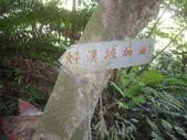 新北林口新林步道:IMGP7510.JPG