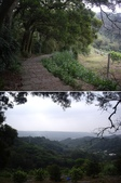 新竹新埔九芎湖步道、九芎湖山:IMGP1975-76.JPG