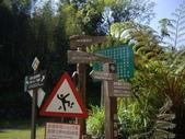 雲林古坑嘉南雲峰、石壁山、萬年峽谷:IMGP9261.JPG