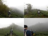 嘉義梅山雲嘉五連峰(太平山、梨子腳山、馬鞍山、二尖山、大尖山):DSCN4407-11.JPG