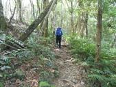 新竹尖石高台山、島田山:DSCN4817.JPG