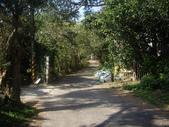 新北林口新林步道:IMGP7487.JPG