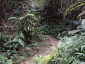 新竹關西赤柯山、赤柯山南峰、東獅頭山:IMGP6343.JPG