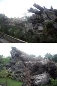 宜蘭羅東林業文化園區:IMGP5561-63.JPG