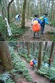 新竹尖石高台山、島田山:DSCN4898-99.JPG