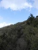 台中和平閂山鈴鳴山(DAY1-閂山):DSCN4256.JPG