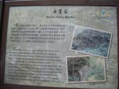 嘉義阿里山大凍山(頂湖線):IMGP8764.JPG