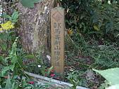 台中和平馬崙山、新山:IMGP2194.JPG