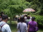 宜蘭員山福山植物園:IMGP5510.JPG