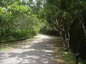 屏東獅仔雙流森林遊樂區瀑布步道:IMGP8290.JPG