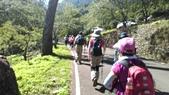 台中和平八仙山主峰步道、佳保台山:IMAG0031.jpg