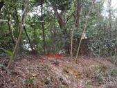新竹新埔石頭山:IMGP3124.JPG