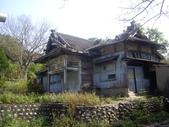 苗栗通霄神社、虎頭山:IMGP7445.JPG
