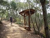台中大肚環保公園登山步道:IMGP6222.JPG