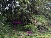 新竹芎林西坑山、南何山、南何山南峰、沙坑山、二確山:IMGP6447.JPG