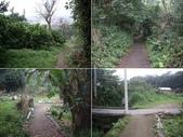 新竹芎林石碧潭生態步道(石潭步道):IMGP9242-45.JPG