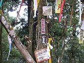苗栗南庄光天高山、向天湖山、神仙谷:IMGP0852.JPG