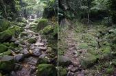 桃園龍潭小粗坑古道、小粗坑山:IMGP6819-20.JPG
