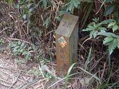 台中和平唐麻丹山:IMGP3676.JPG
