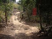 台中大肚環保公園登山步道:IMGP6223.JPG